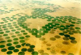 Veteodling Saudi